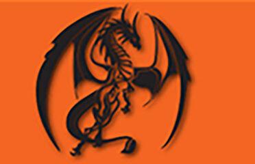 Dragon's Last Mile Internet